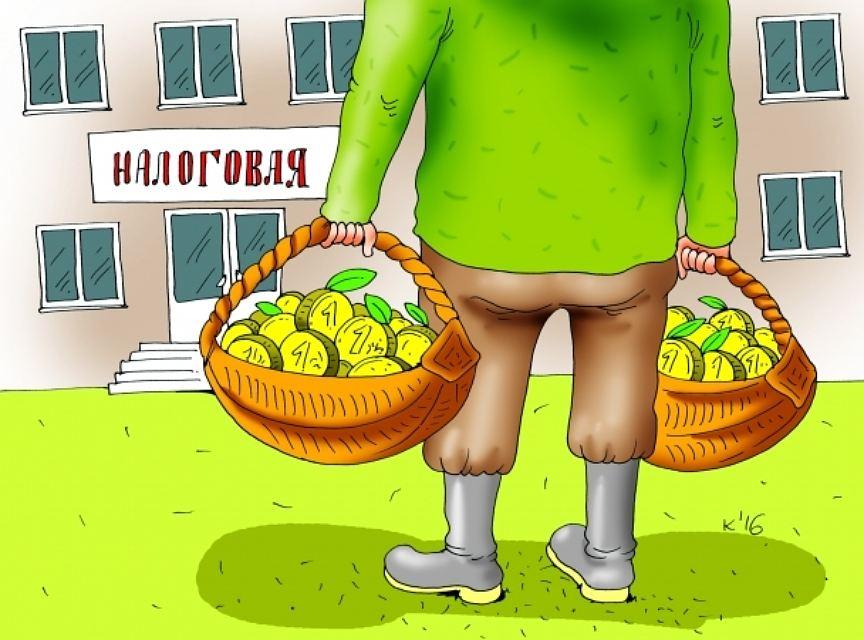 Корзинки с деньгами в налоговую